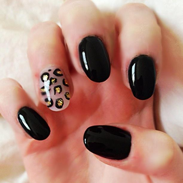 Black Cheetah Accent